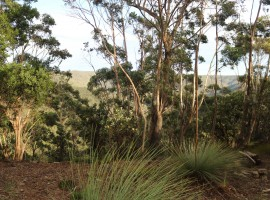 VACANT LAND – Spectacular 180º Views into the National Park !